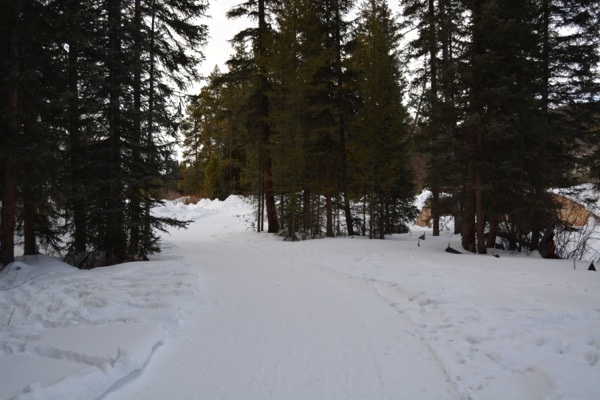 Snowshoe the Fraser River Trail